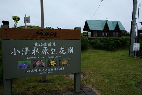 2017.6 北海道 238.JPG